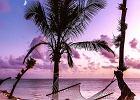 Zanzibar, Seszele, Bali -  ceny na sezon 2020 spadają o 50%!