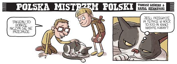 Zdjęcie numer 31 w galerii - Polska mistrzem Polski