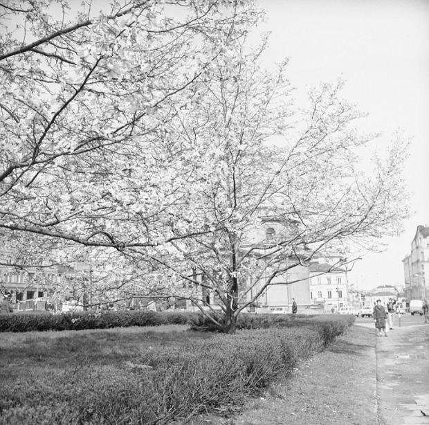 Plac Trzech Krzyży w roku 1976