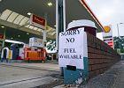 Wielka Brytania. Kolejki do stacji benzynowych, rząd wyda 5 tys. wiz tymczasowych dla kierowców [KORESPONDENCJA]