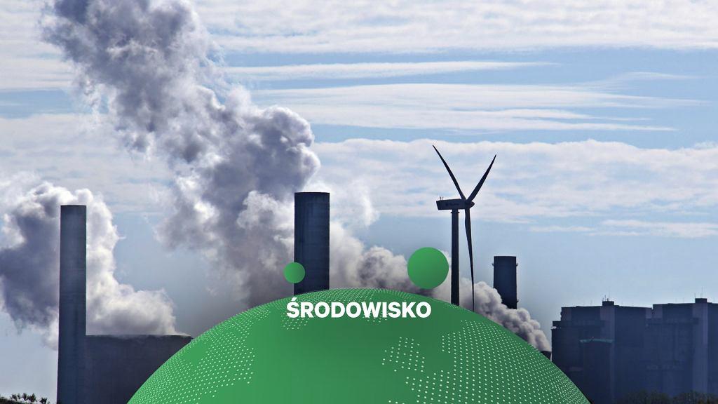 Sąd najwyższy w Holandii ocenił, że kraj musi obniżyć emisje dwutlenku węgla