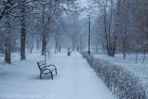 Zdjęcie numer 20 w galerii - Zima w Krakowie - śnieg przykrył ulice, domy, parki [GALERIA]
