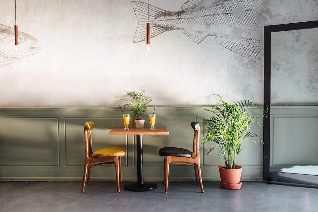Kultowe krzesło 200-190 we współczesnej formie. To mebel Rajmunda Teofila Hałasa odwzorowany przez 366 Concept Retro Furniture.