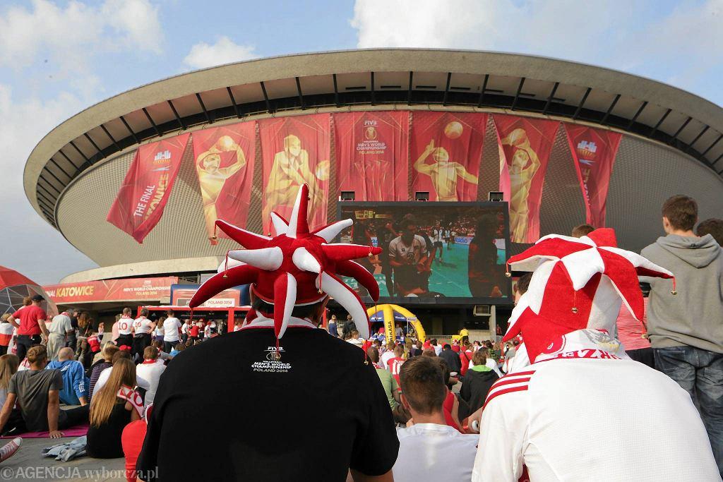 Kibice pod Spodkiem przed rozpoczęciem finałowego meczu Mistrzostw Świata w 2014 roku