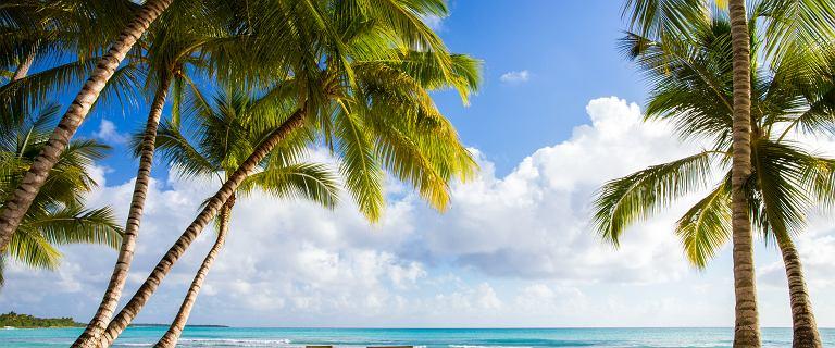 Egipt czy Dominikana? Porównujemy oferty na wakacje 2021