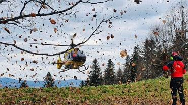 W okolicach Trzech Koron mężczyzna spadł z drzewa. Do szpitala zabrał go śmigłowiec