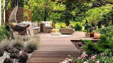 Kwiaty ogrodowe dobrze dobrane i odpowiednio pielęgnowane stanowią ciekawe aranżacje w ogrodzie. Zdjęcie ilustracyjne, Photographee.eu/shutterstock.com