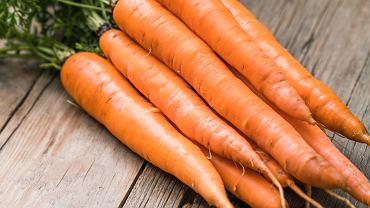 Jak siać marchew? Wszystko, co należy wiedzieć o uprawie marchewki. Zdjęcie ilustracyjne