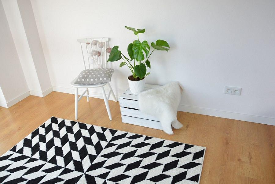 Najmodniejsze dywany do mieszkania.