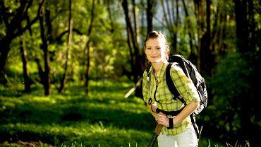 Polska. Nordic walking, czyli maszerowanie z kijkami - tutaj w lasach wokół Hajnówki