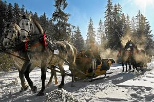 8 pomysłów na ferie w Polsce. Również dla tych, którzy nie jeżdżą na nartach