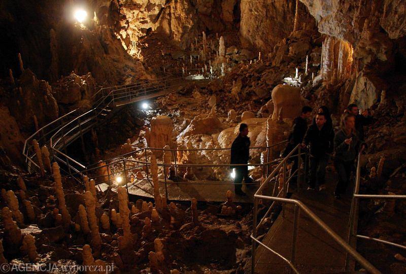 Można ja podziwiać w Kletnie. Znajduje się w Masywie Śnieżnika Kłodzkiego, niedaleko doliny Kleśnicy, w bloku góry Stromej o wysokości 1166,8 m n.p.m. Korytarze jaskini rozłożone są horyzontalnie, w trzech poziomach połączonych kominami. Ich łączna długość przekracza 2,5 km. Jest to jedna z największych jaskiń w Sudetach. Czynna jest od wtorku do niedzieli w godz. 9-16.40. Najlepiej zarezerwować miejsce telefonicznie. Ceny między 10 a 22 zł. Fotografowanie i filmowanie są dodatkowo płatne.