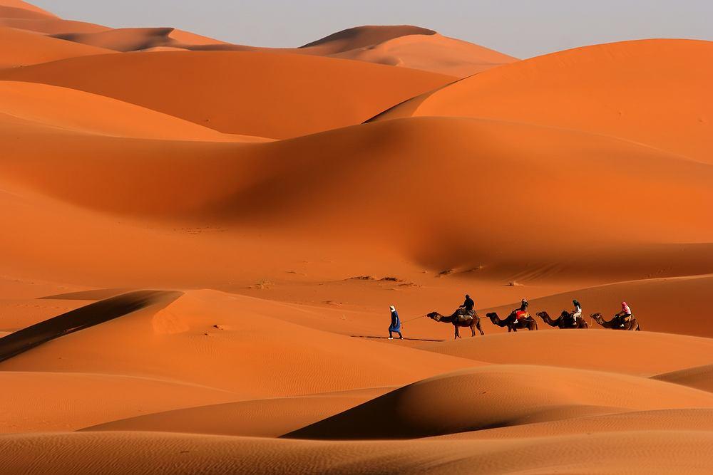 Tunezja, Sahara