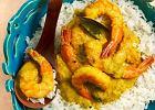 Menu dnia z doskonałym curry