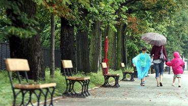 Puste ławki w Alejach Ujazdowskich