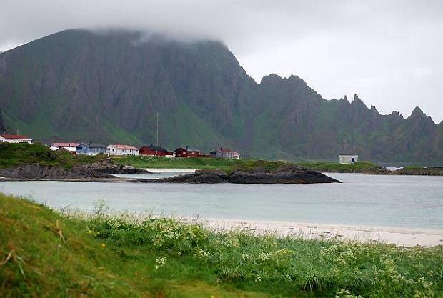 Norwegia. Wielorybnicze safari
