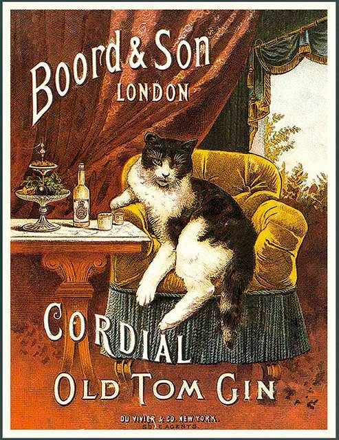 Plakat z kotem reklamujący gin typu Old Tom