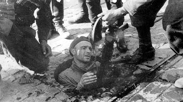 Powstanie warszawskie. Wyjście z jednego z kanałów, z którego Niemcy wyciągają powstańców