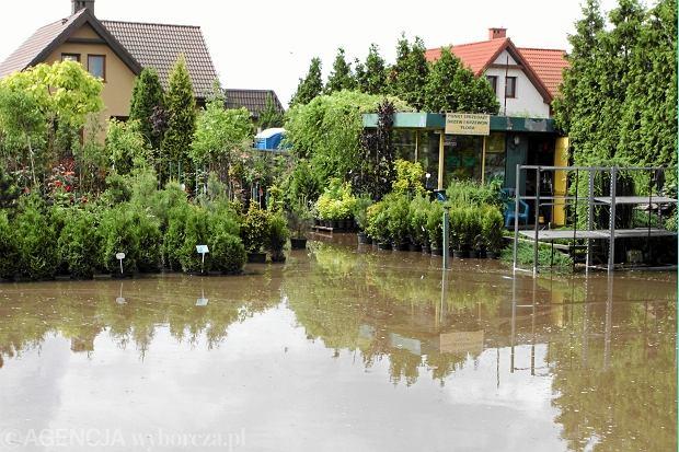Coraz chętniej kupujemy ubezpieczenie mieszkania czy domu. Polisę ma już 80 proc. Polaków
