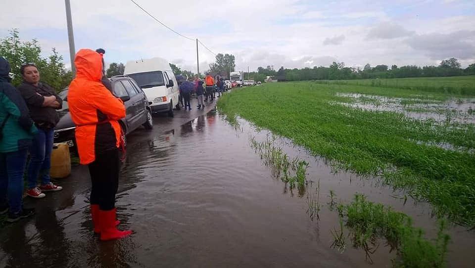 Ewakuacja zwierząt z zalanego przez powódź schroniska 'Czekadełko'