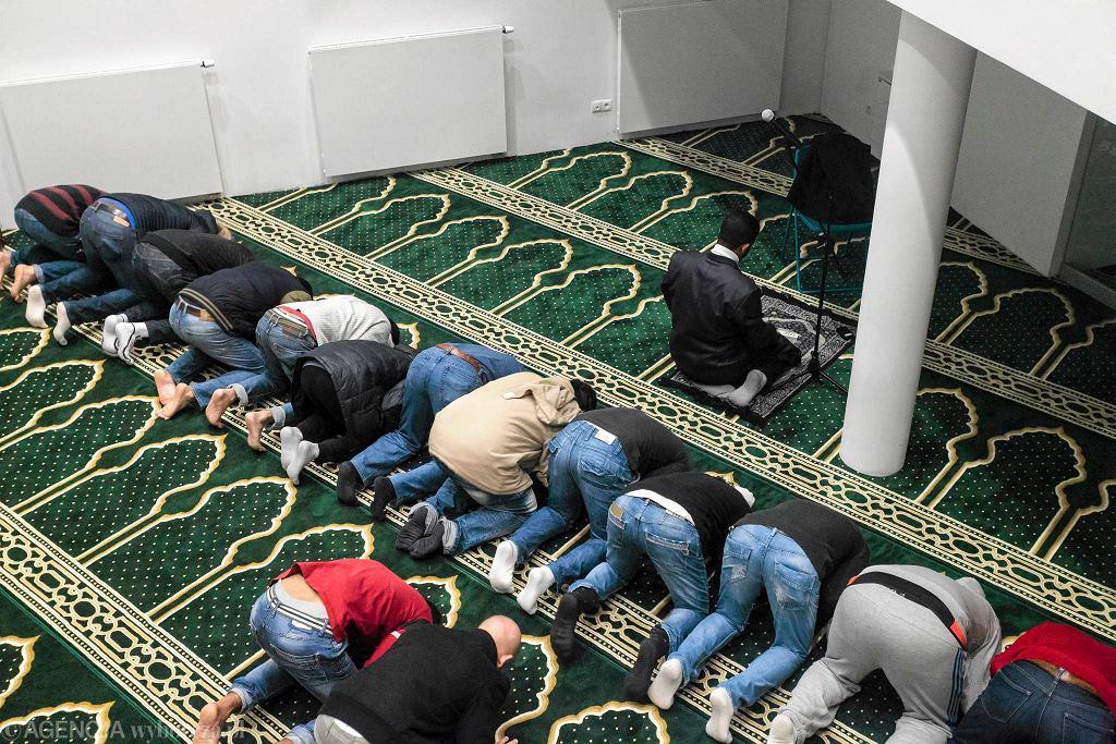 Modlitwa w sali modlitewnej Ośrodka Kultury Muzułmańskiej w Warszawie / DAWID ŻUCHOWICZ