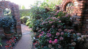 Ogrody Tematyczne Hortulus w Dobrzycy. To miejsce warto odwiedzić i zapomnieć o całym świecie wśród kwiatów, zapachów i barw