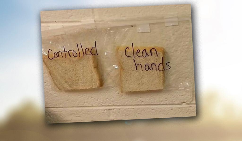 Test chleba, po którym twoje dziecko, już nigdy nie zapomni umyć rąk.