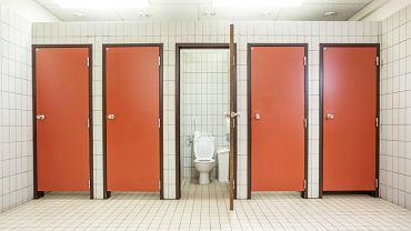 Siadanie na desce w publicznej toalecie jest bezpieczniejsze na zdrowia niż załatwianie się w 'pół-stojącej' pozycji