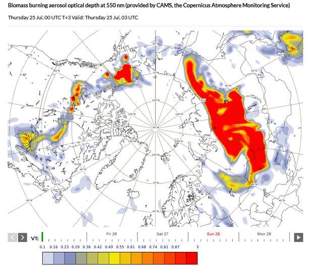 Prognoza dot. aerozoli ze spalania biomasy