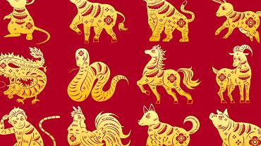 Chińskie znaki zodiaku. Zdjęcie ilustracyjne