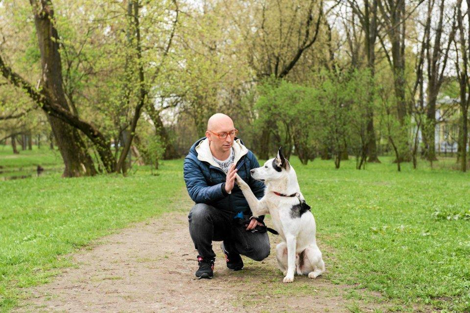 Pies Może Wejść Do Parku Zakazy Są Nielegalne