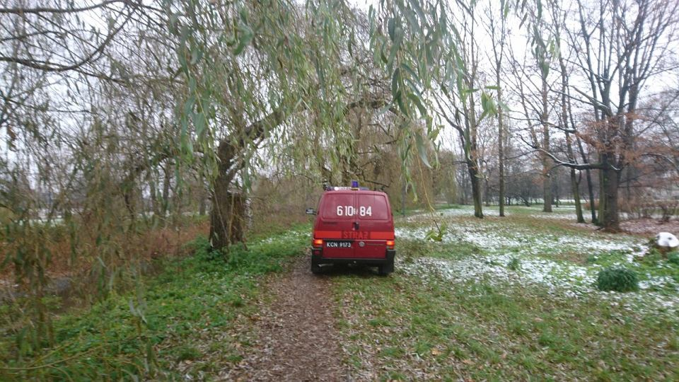 Interwencja Straży Pożarnej w Parku Sieleckim w Sosnowcu