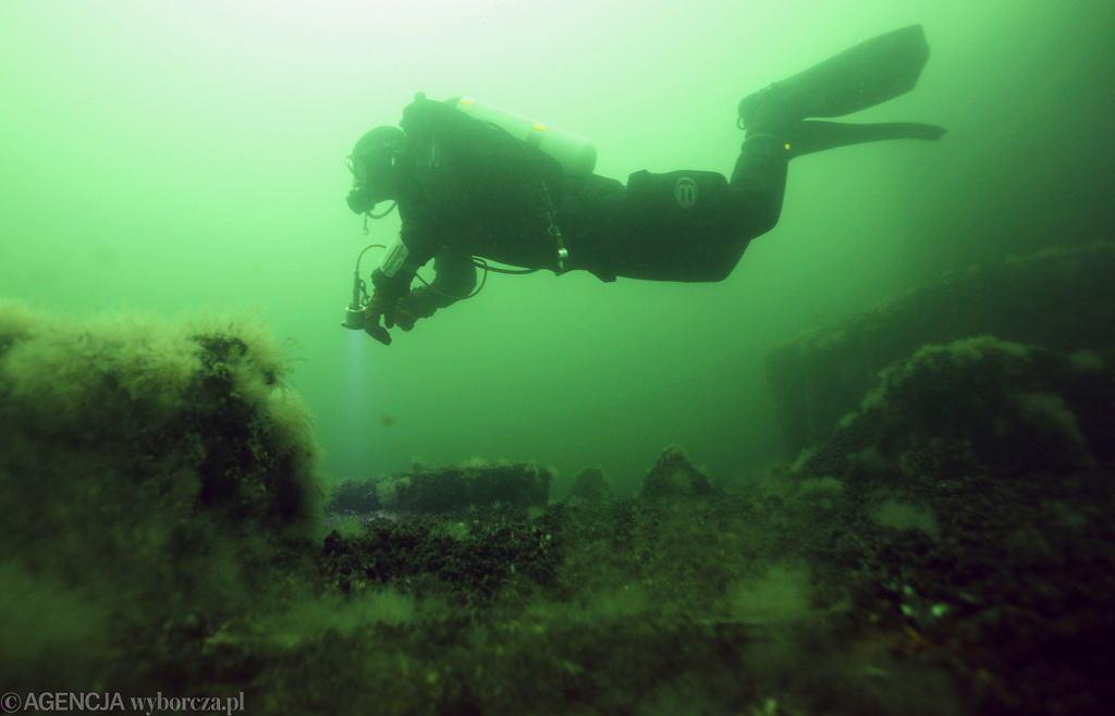 Płetwonurek w Morzu Bałtyckim