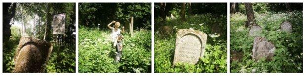 Najstarszego na Lubelszczyźnie kirkutu nie sposób zwiedzić. Piękne, stare macewy skrywa gąszcz pokrzyw, chaszczy i zwalonych drzew.