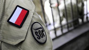 Raducz. Funkcjonariusz SOP zderzył się z łosiem. Jechał na kontrolę w ośrodku szkoleniowym