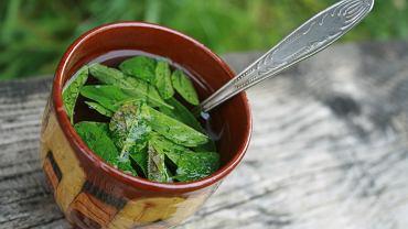 Herbatka z mięty pomoże załagodzić dolegliwości żołądkowe