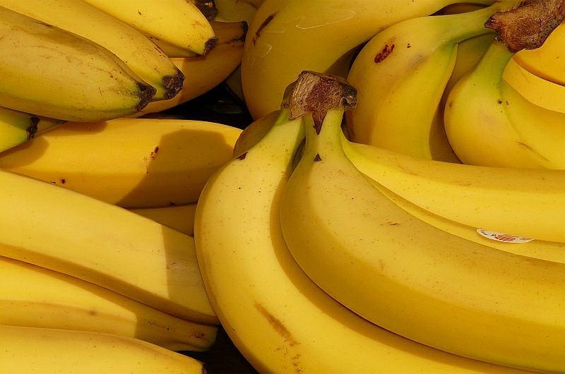 Jadowity Pająk W Bananach Morderczyni O Czarnym Brzuchu