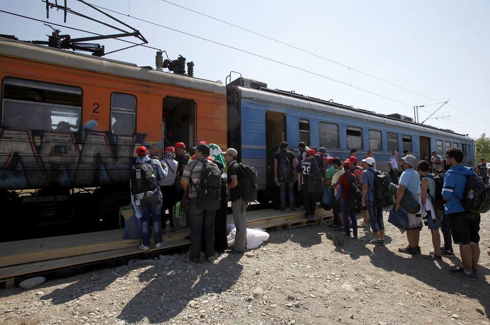 Imigranci stoją w kolejce do pociągu odjeżdżającego z Grecji do Serbii