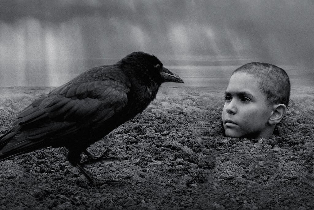 Malowany Ptak, reż. Vaclav Marhoul