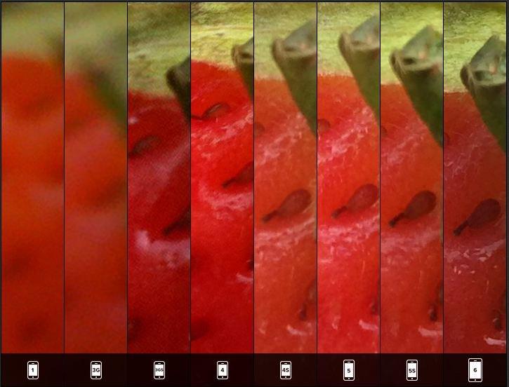 Zestawienie szczegółów zdjęć wykonanych w trybie makro