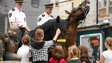 Patrol łódzkiej straży miejskiej na koniach. Zdjęcie z lipca 2011