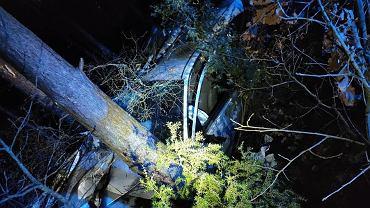 Piła. Pijany 15-latek rozbił auto na drzewie