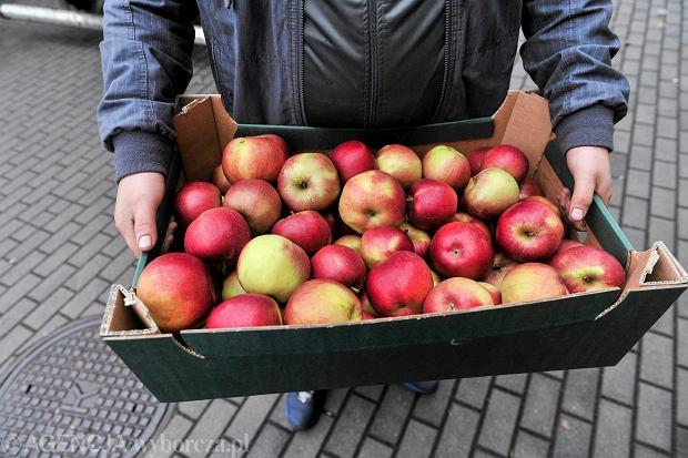 Absurd pod unijnym pretekstem. Żeby kupić skrzynkę jabłek od rolnika, właściciel warzywniaka musi podpisać specumowę. Albo kara