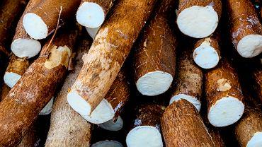 Mało popularną, a bogatą w błonnik i białko, jest mąka produkowana z manioku, znana także jako kassava