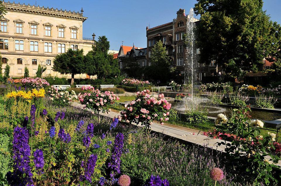 Ogród różany w Świdnicy