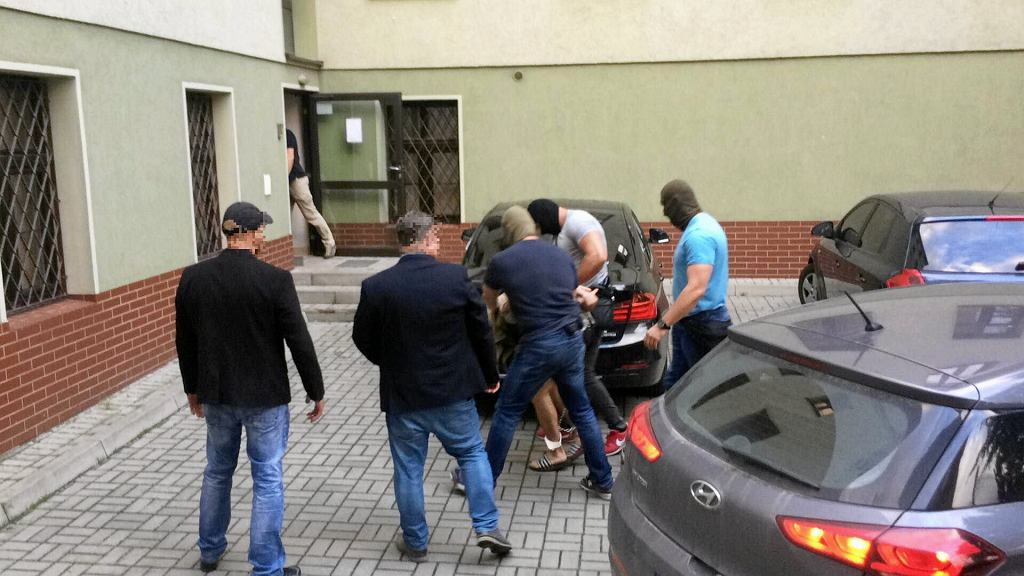 Doprowadzenie 22-letniego mężczyzny podejrzanego o zabójstwo 10-letniej Kristiny w Mrowinach