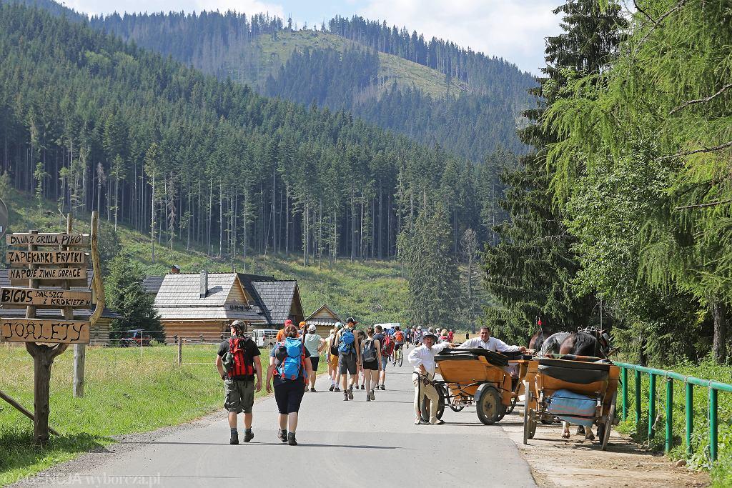 Tatrzański Park Narodowy podsumował wakacje. Turystów sporo mimo pandemii