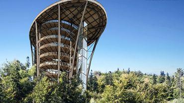 Koncepcja przewiduje budowę na Czantorii trasy spacerowej w koronach drzew, wieży widokowej i budynku edukacyjno-restauracyjnego