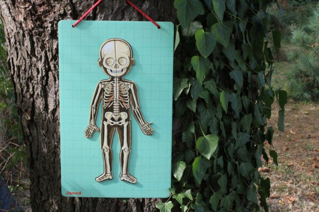 Układanka magnetyczna ciało / fot. Ania Oka