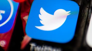 Twitter-COVID Misinformation